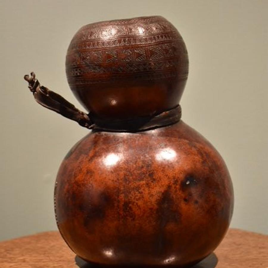 Ethiopian Gourd
