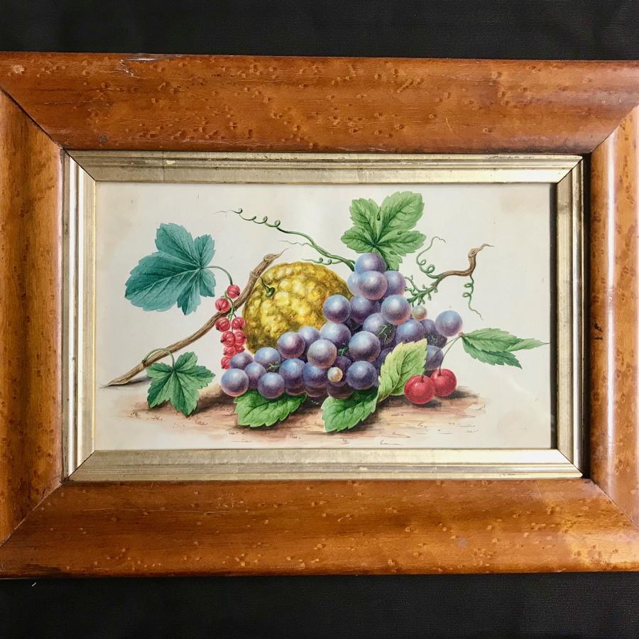 19th c. Watercolour - Fruit