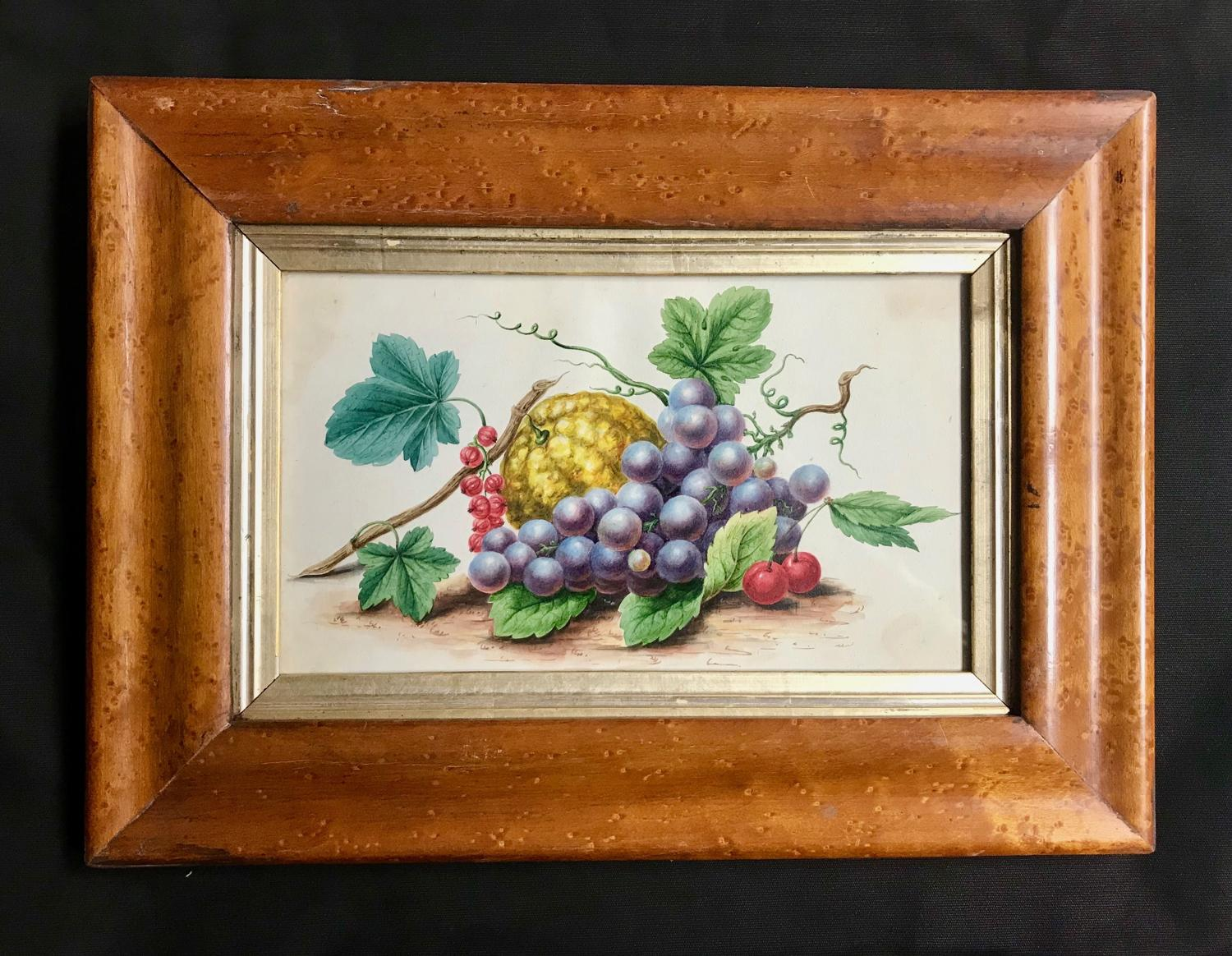 19th c. Watercolour - Fruit