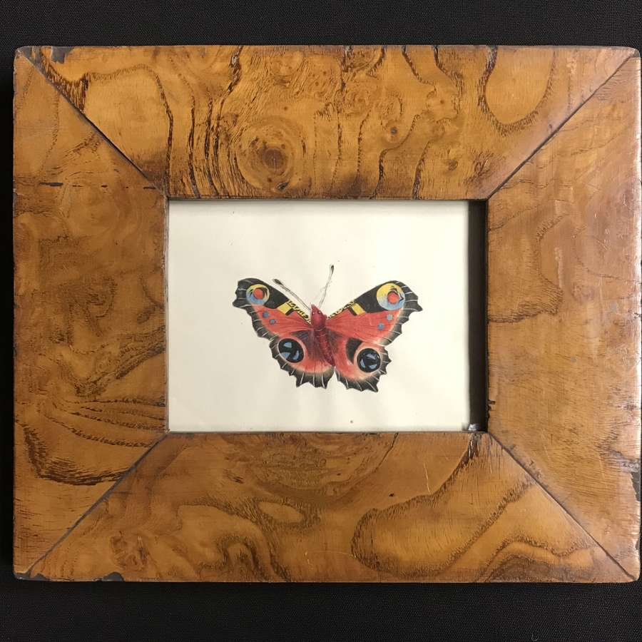 Regency framed watercolour -Peacock Butterfly