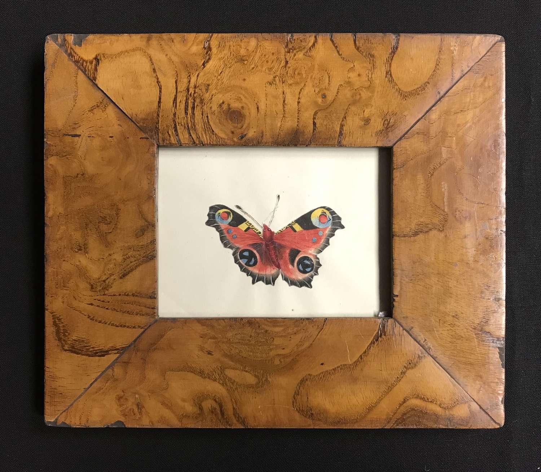 Regency framed watercolour -Peacock Butterfly