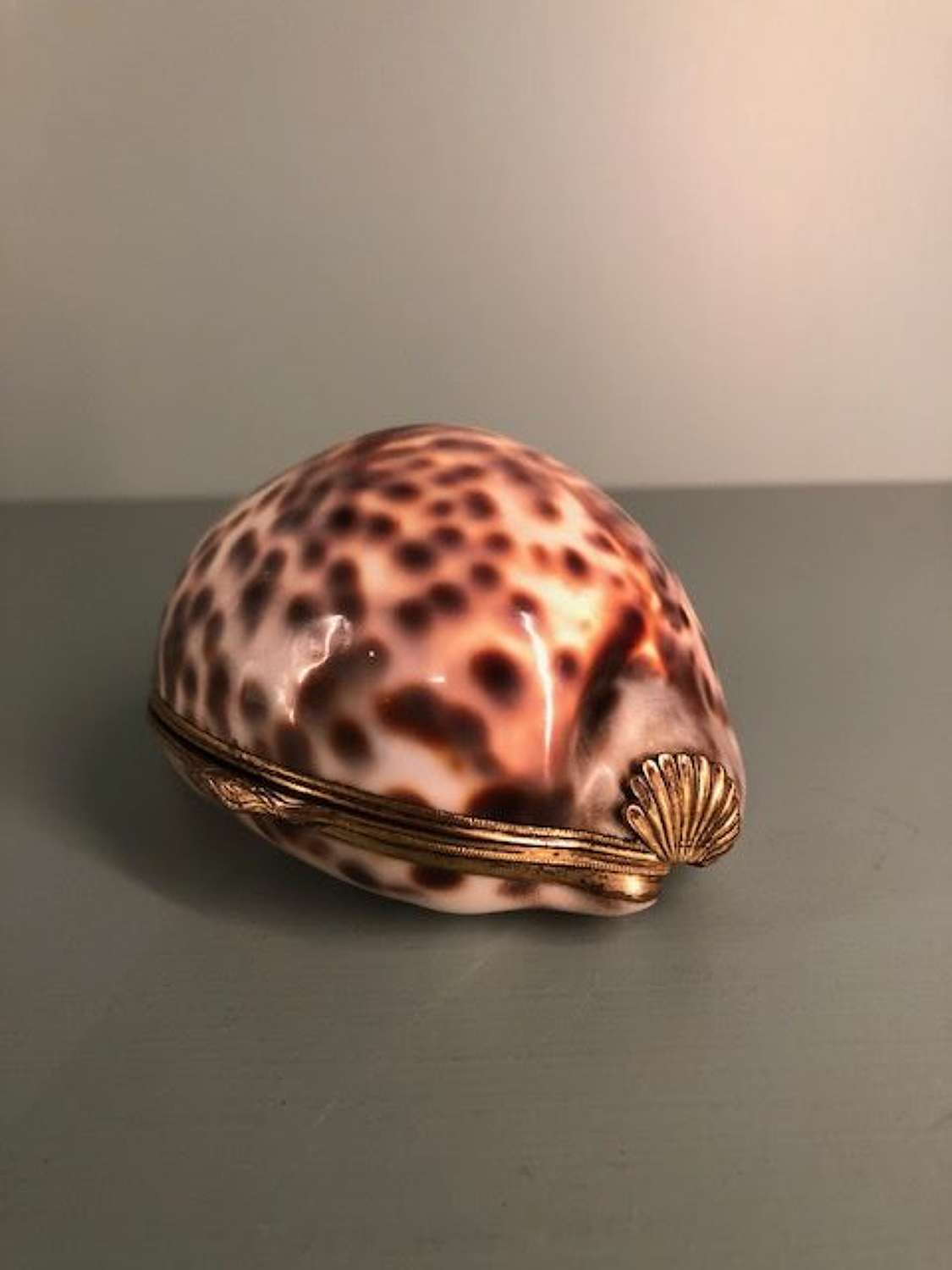 18th century Gilt metal mounted cowrie shell snuff box